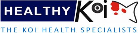 Healthy Koi